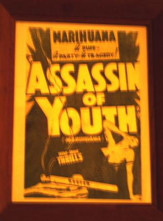 http://attu.typepad.com/universo_anarquico/images/2007/06/04/marihuana.jpg